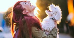 ventajas de llevar a la mascota al trabajo