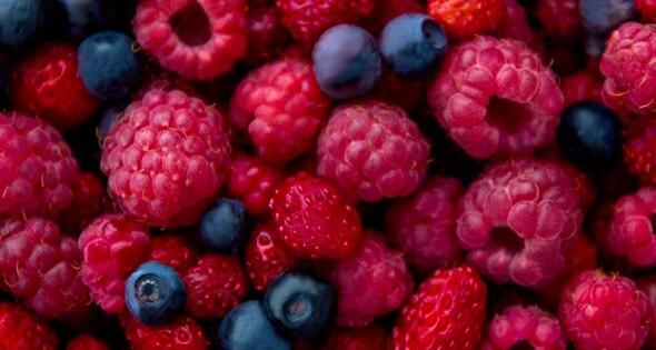 El SAE busca 10.000 empleados para recoger frutos rojos en Hueva (istock)