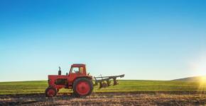 10.000 empleos para la campaña de frutos rojos en Huelva (istock)